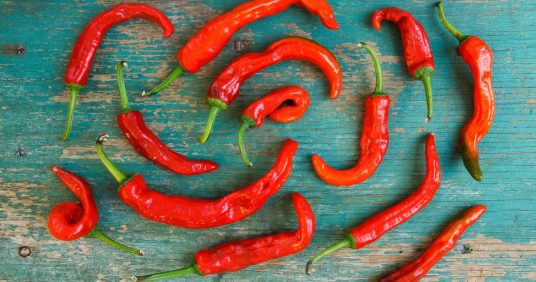 Eating Spicy Food in Pregnancy: Is it safe?